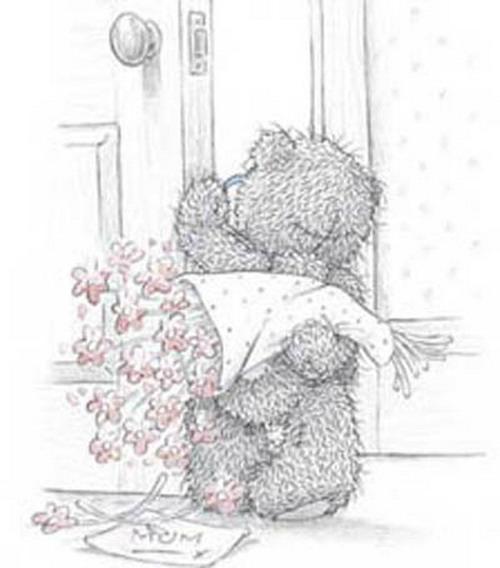 Мишки Тедди (35 картинок)